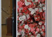Шкаф с фотовитражом «Цветочный бум»