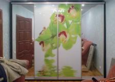 Шкаф с фотовитражом «Зеленые ирисы»