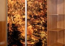 Шкаф-купе с фотовитражом «Осень»