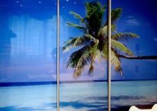 Шкаф-купе с фотовитражом «Рай на земле»