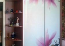 """Фотовитраж для шкафа-купе """"Нежные цветы"""""""