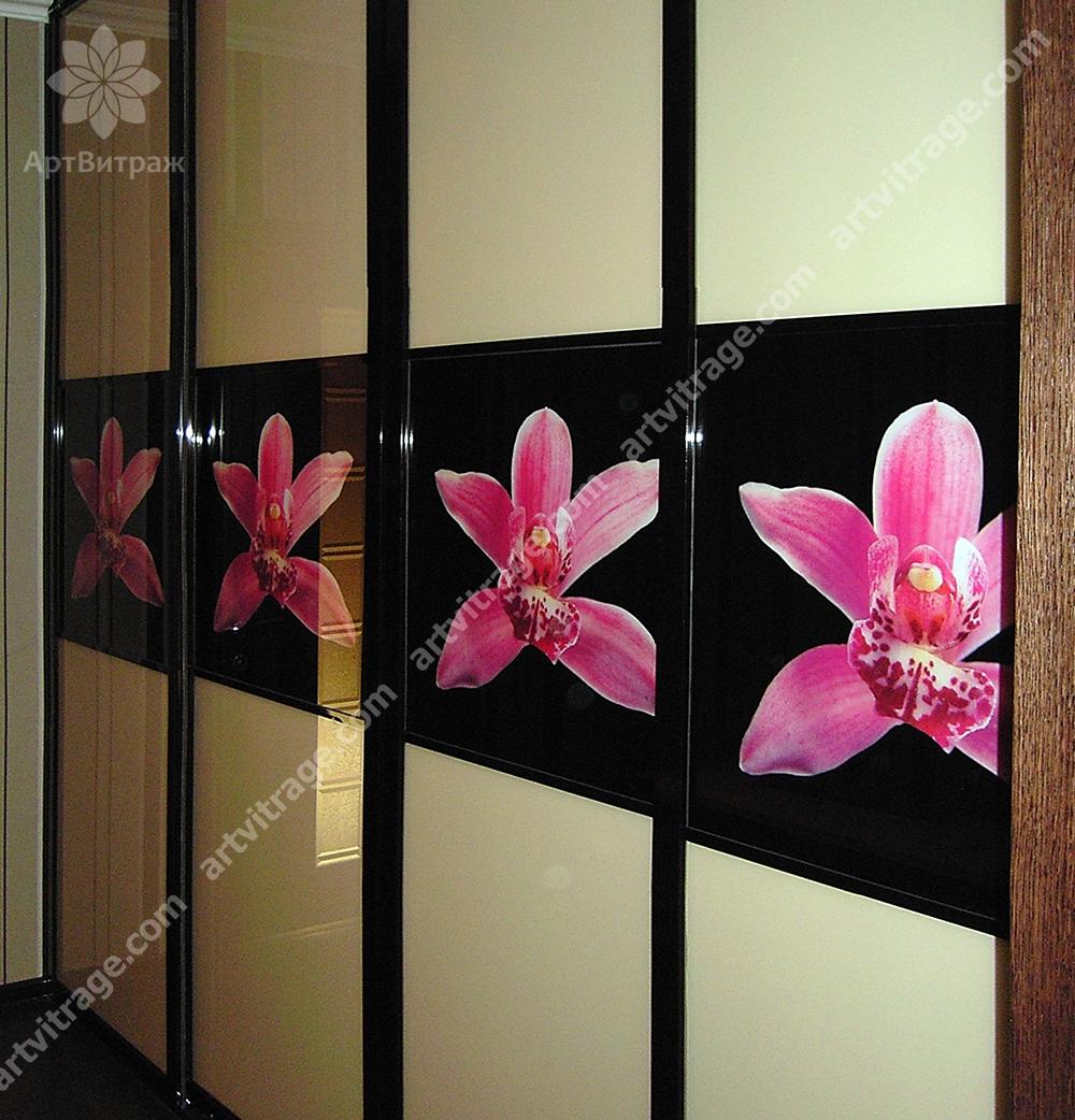 Шкаф-купе с фотовитражом «Розовые лилии»